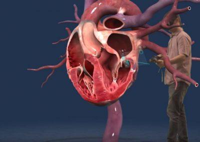 Réalité virtuelle et enseignement - anatomie médecine biologie